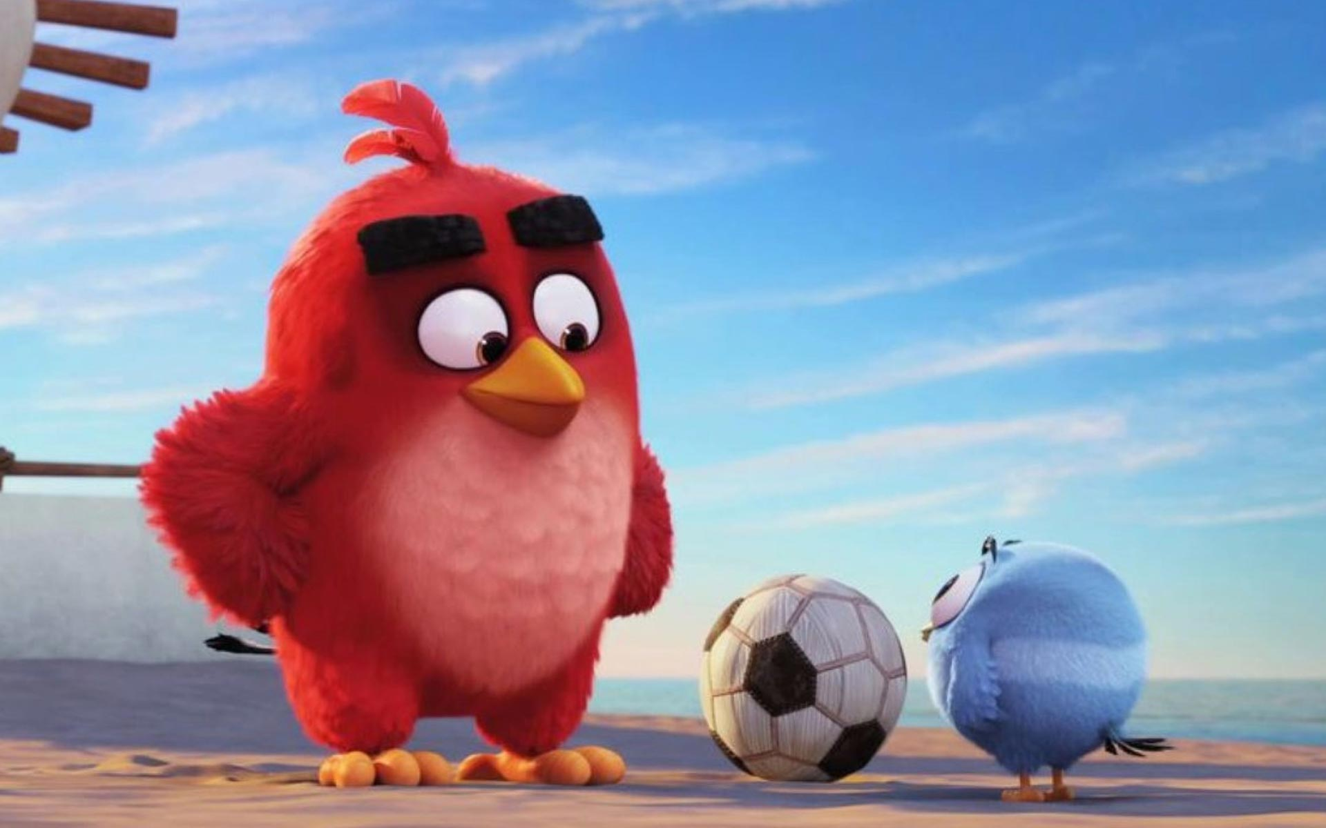 Angry Birds HD Wallpapers 30