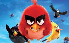 Angry Birds HD Wallpapers 1