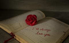 Love HD Wallpapers 4