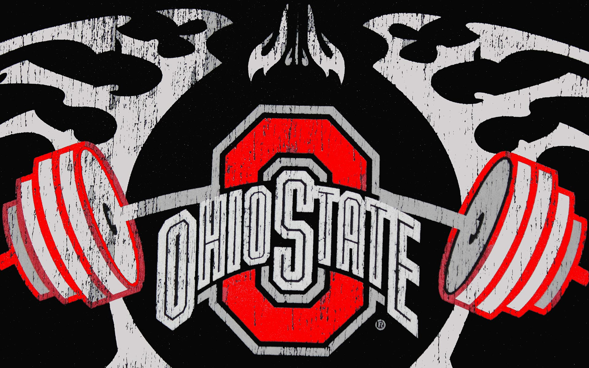 Ohio State Buckeyes HD Wallpapers 6