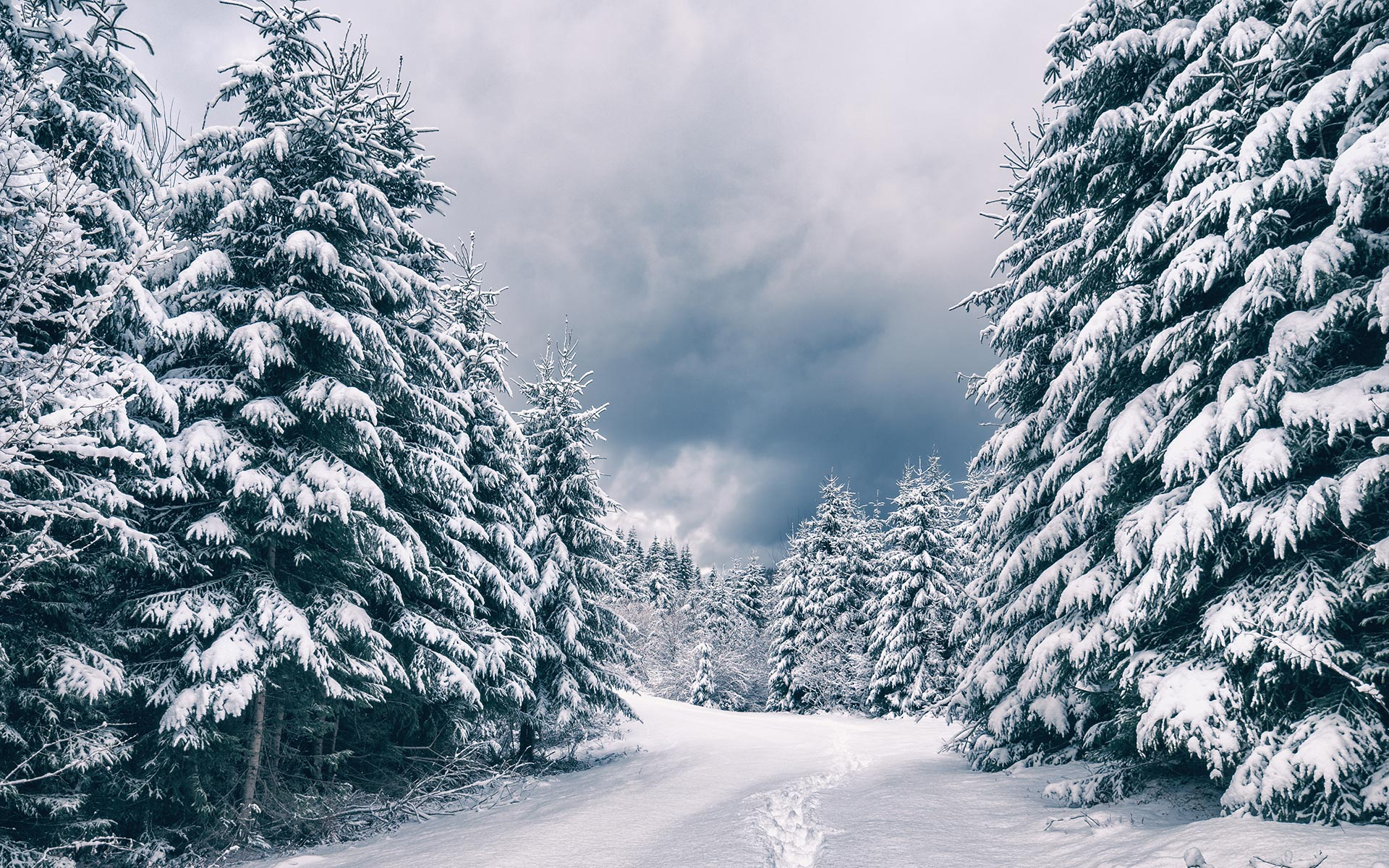 Snow HD Wallpapers 19