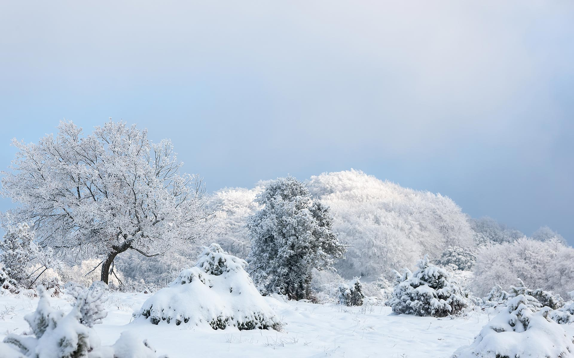Snow HD Wallpapers 29