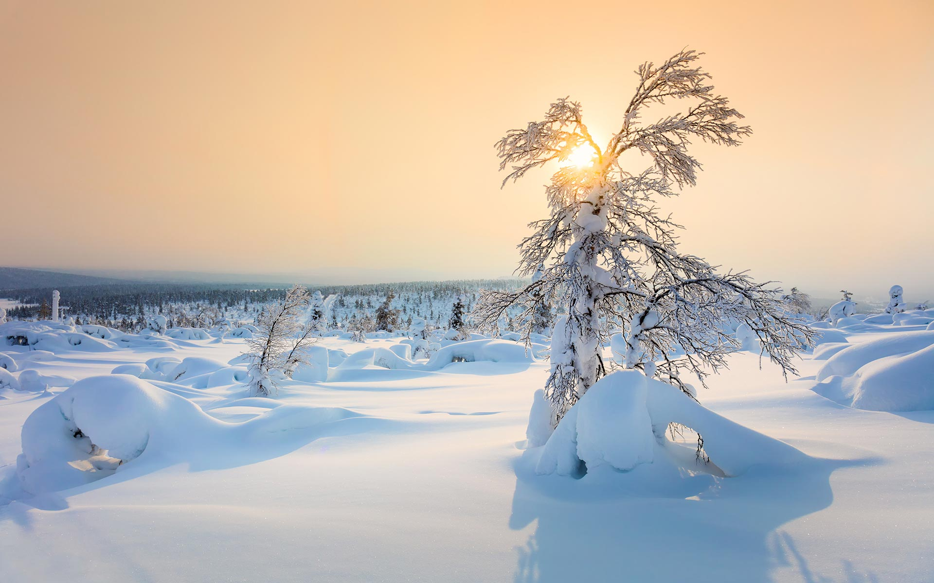 Snow HD Wallpapers 31