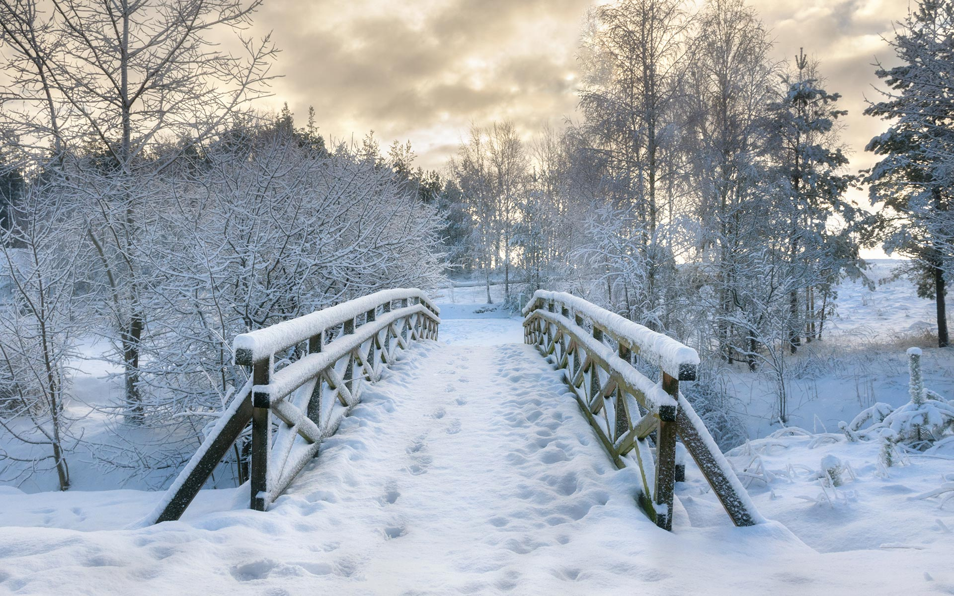 Snow HD Wallpapers 16